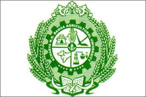 agricultural engineering colleges in andhra pradesh top