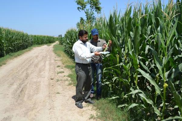 agronomist as a career option