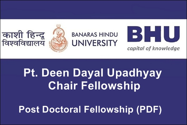 Pt. Deen Dayal Upadhyay Chair Fellowship
