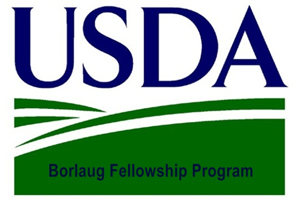 Borlaug Fellowship Program
