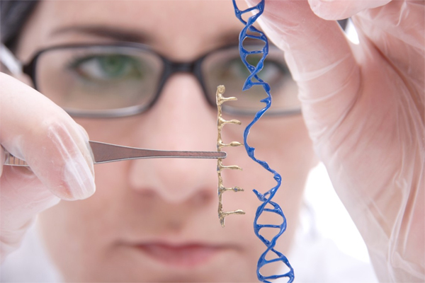 Educational Qualification For Genetic Engineering Careers
